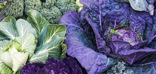 ubat veggie / Tabu Lunch