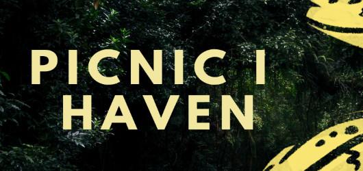 PICNIC I HAVEN