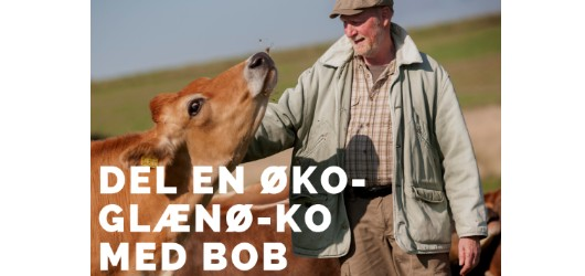 BOB - BioMio Organic Bistro